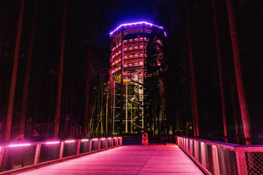 Treetop Walkway in Lipno, Sightseeing trail in tree crowns. Wooden construction with a slide for children in the middle. Touristic place and unique construction in the Czech Republic.